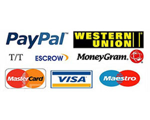 Multiple Payment Methods